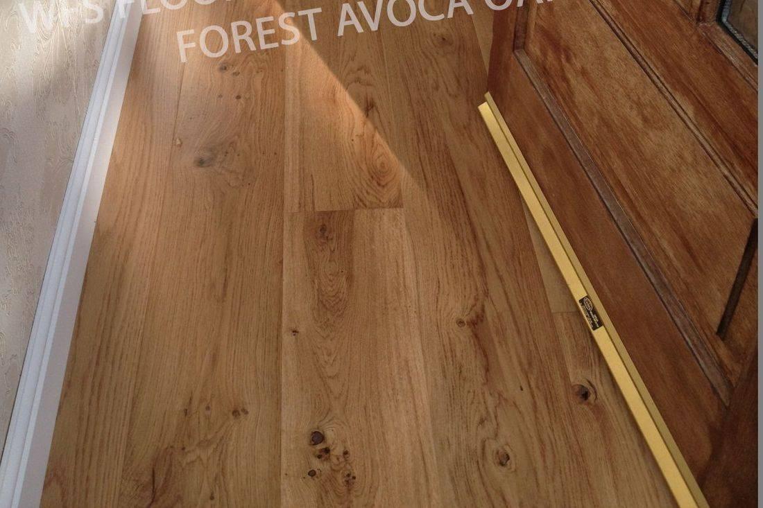 Forest Avoca Oak