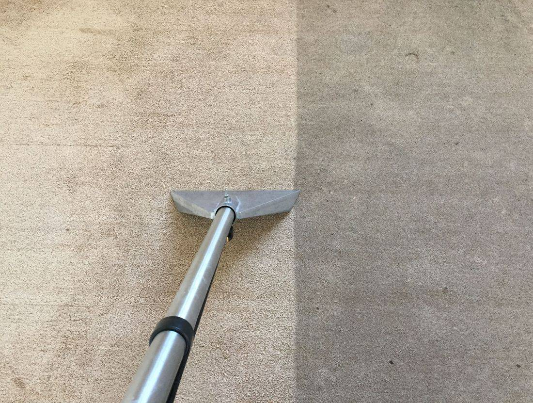 Spray Extraction Carpet Cleaning in Leicester