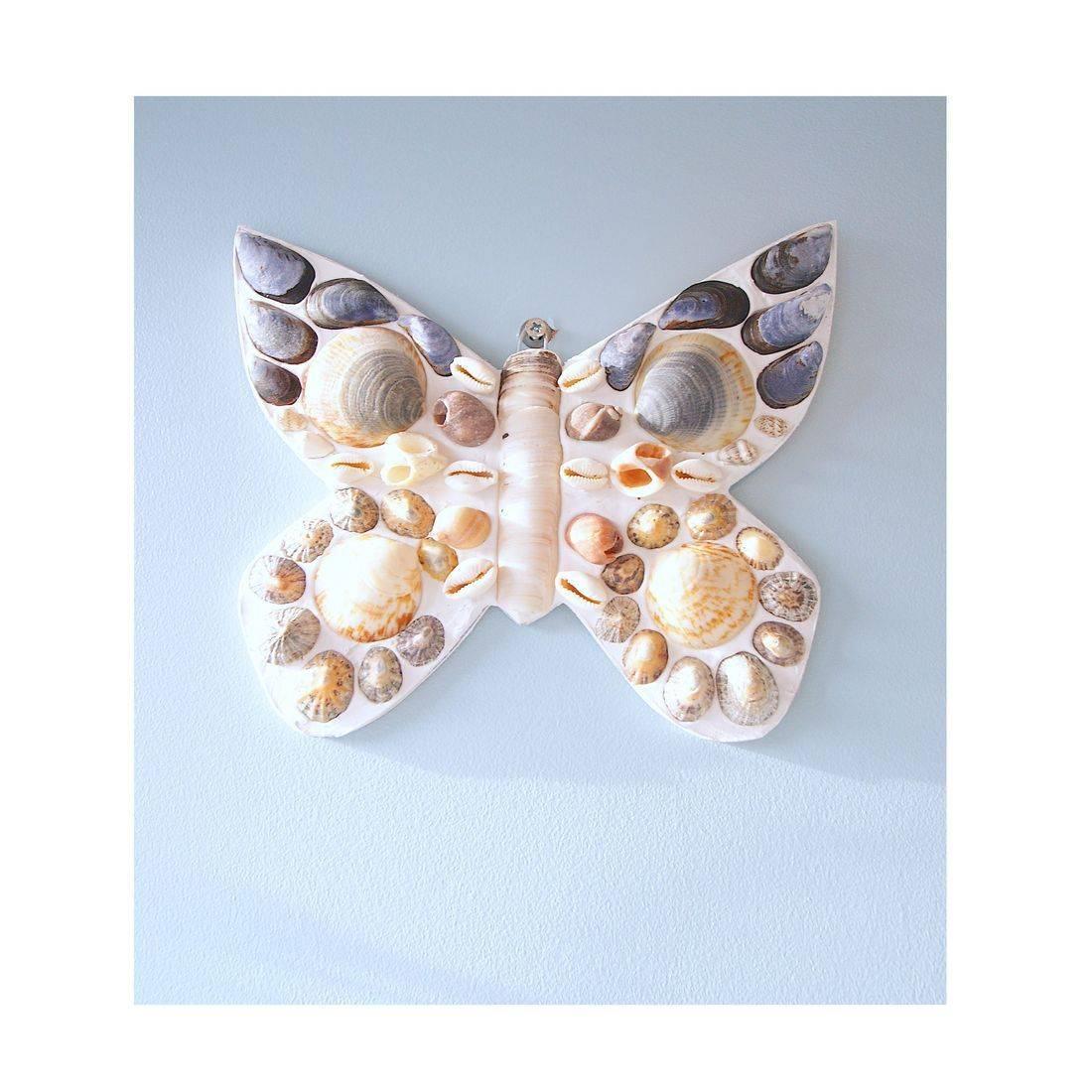 6 Mosaic Shell butterfly