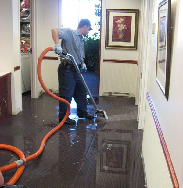 Action Steam Cleaning Water Damage Cleanup