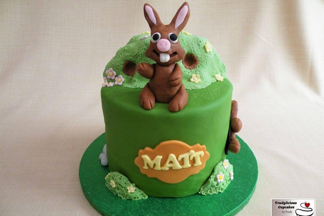 Rabbit theme cake