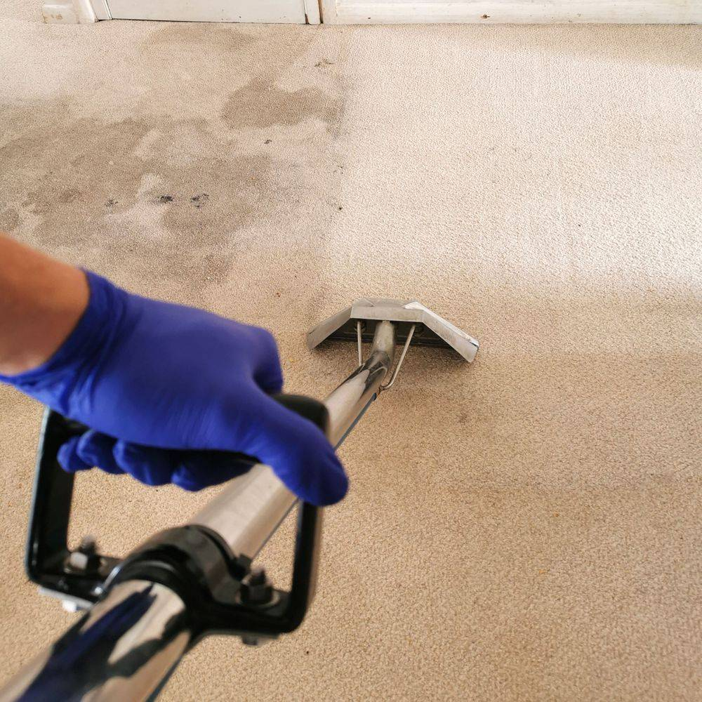 Carpet cleaning with PPE