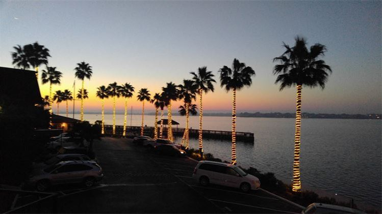View of Clear Lake, evening views, palm trees with lights, fishing pier
