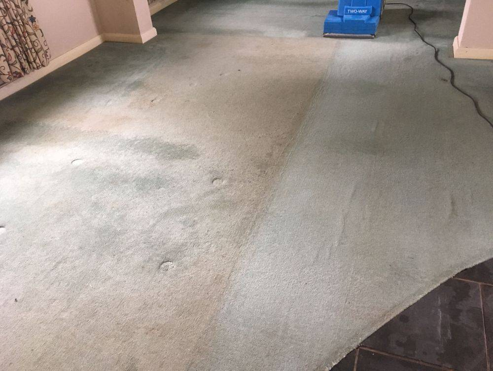 Gleaming Services carpet clean