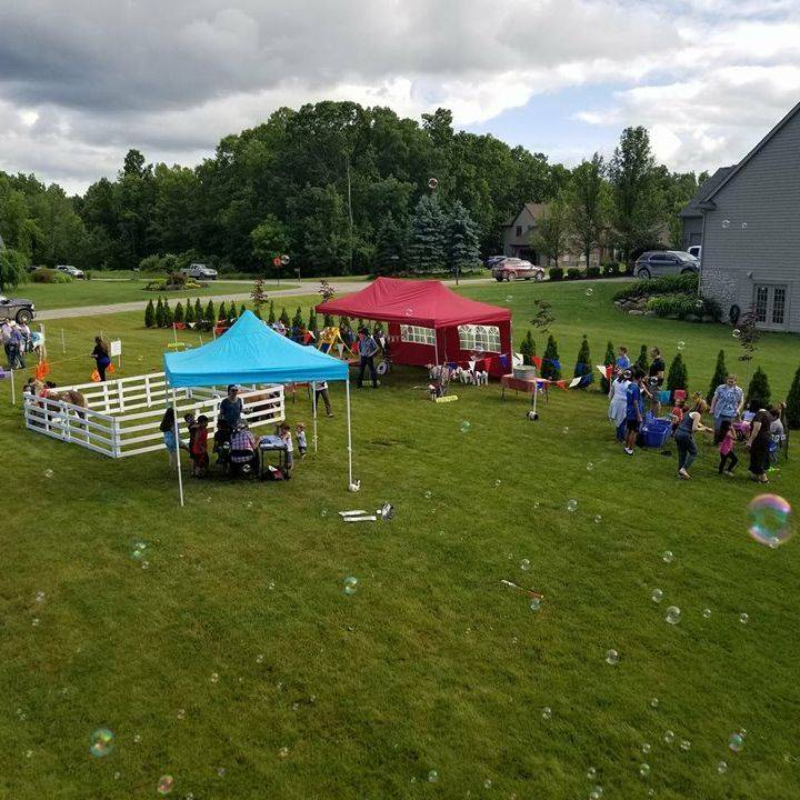 Lawn filled with bubbles in the air and a tent on the lawn