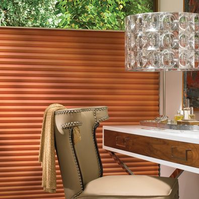 Hunter Douglas Duette Honeycomb with Elan fabric and top-down bottom up option.