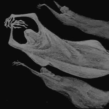 ghosts santa cruz haunted