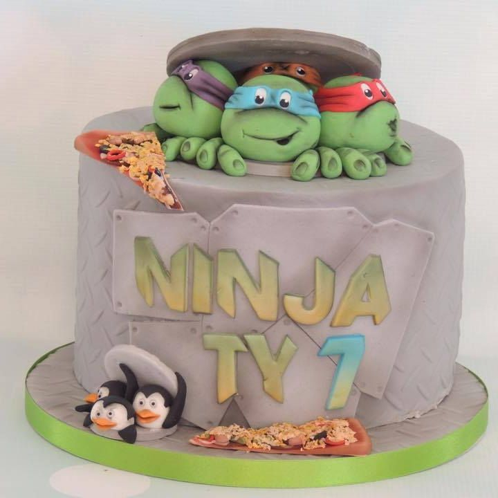 Ninja Turtle TMNT Cake Penguins Madagascar Pizza Drain