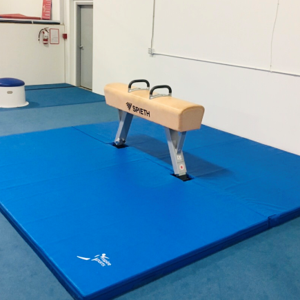 Pommel Horse at Inspire Sports Victoria in Saanich.  Recreational Gymnastics.  Competitive Gymnastics.
