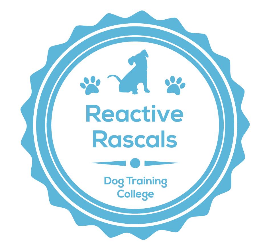 focus dog walking reactive rascals completion