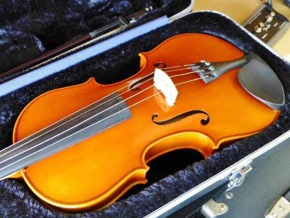 close up picture of a Strobel Viola in a hard case