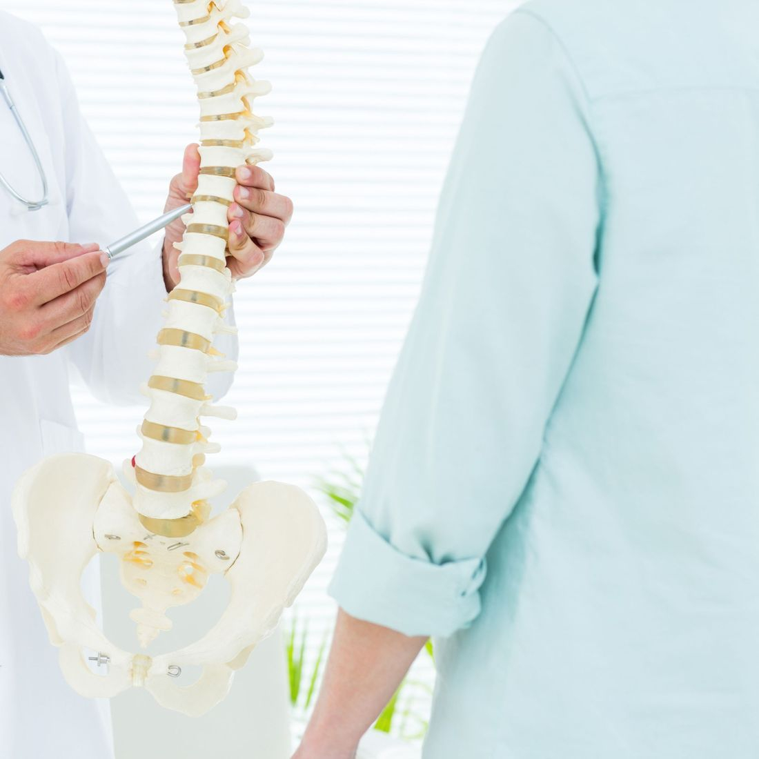 Surrey Physiotherapy Back Pain