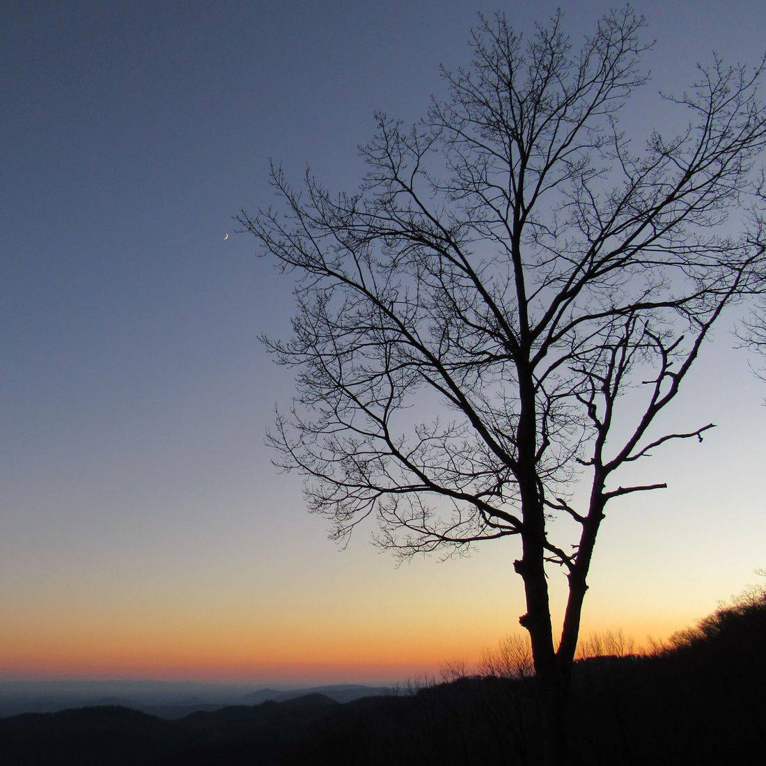 Blue Ridge Mountains, NC, Sunset, Trees, Horizon