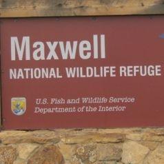 Maxwell National Wildlife Refuge