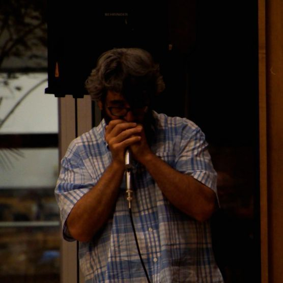 Larry Spiwak on Harmonica