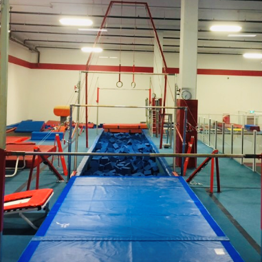 Rings and Bars Over Foam Pit At  Inspire Sports Victoria and Saanich.  Recreational and Competitive!