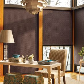 Designer Roller Screen Shade