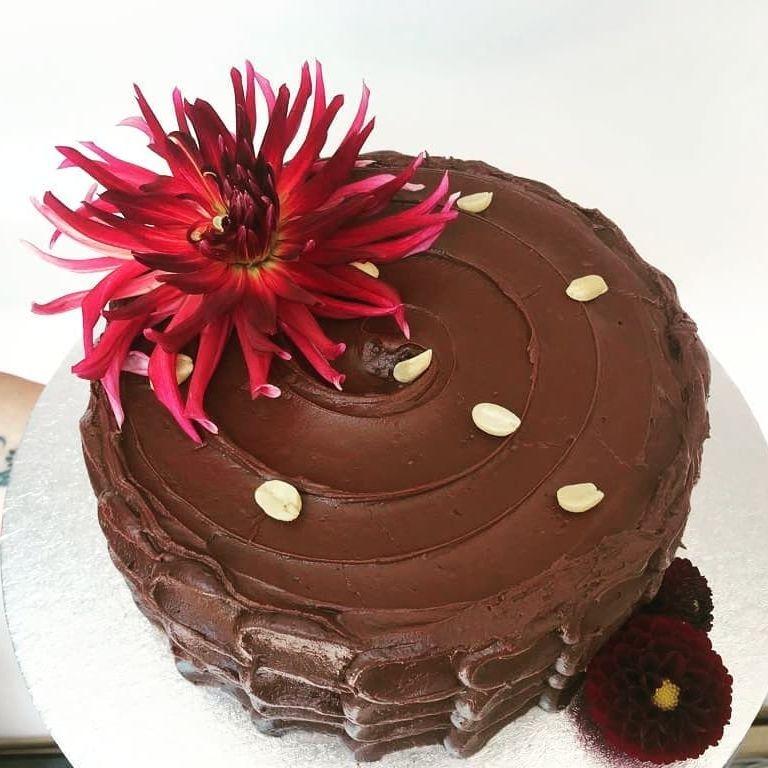 vehan peanut butter chocolate cake maldon
