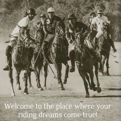 exhilarating polo