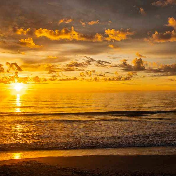 PAndercyk - Golden Sunrise - Photography on Canvas - 12x8 - $50