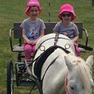 kids riding pony cart