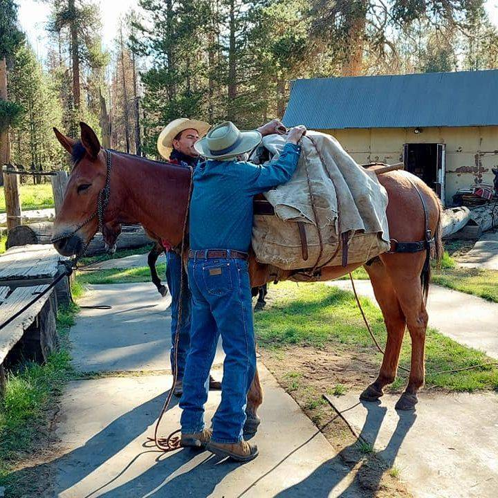 My husband, he is meticulous with his packing methods.  He is quiet with the stock, patient when others loose their minds, and finds humor in the funniest things a mule will do.  The Minarets Pack Station isn't his first rodeo nor will it be his last.  He is an adventurer, a Packer, a forest steward while picking up other items past travelers have discarded along the trails.  Our worst mules will stand quiet for him while he gets their gear together.  Mules others are afraid to touch.  The mules can see it in him, their souls are similar. He is a Packer...and they Pack for him.
