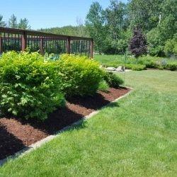 Spring Garden Maintenance