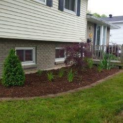 Garden Maintenance and Restoration