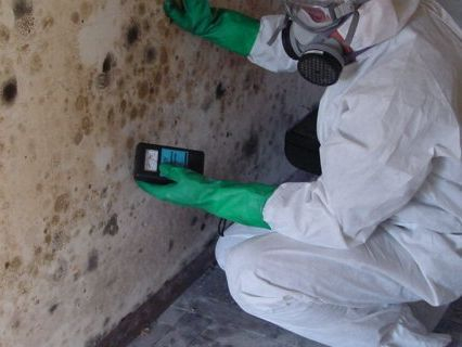 black mold inspection Oakland CA