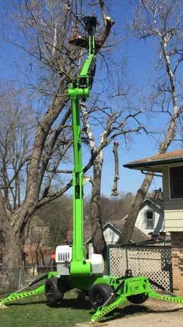 Des Moines Tree Services