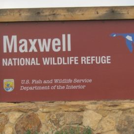 Maxwell  National Wildlife Refuse