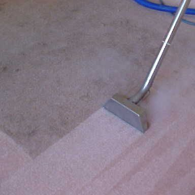 Carpet Cleaning by Action Steam Cleaning