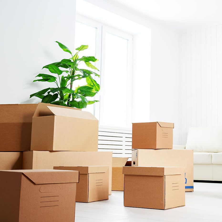 Moving, Downsizing, Decluttering, Northumberland