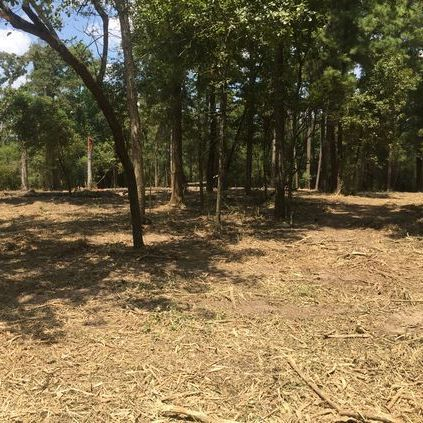 Underbrushing, under brush, land clearing, hydro mulching, mulchin