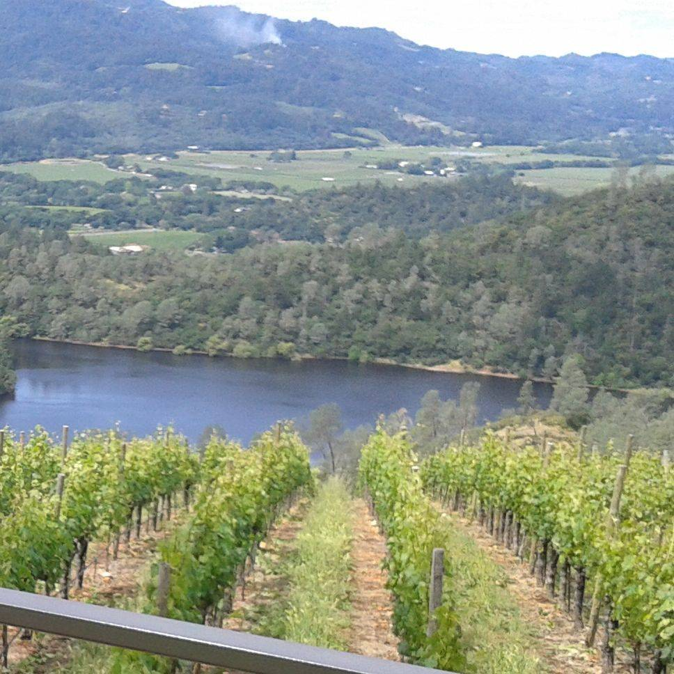 See views like this with Napa Sonoma Wine Tasting Driver.