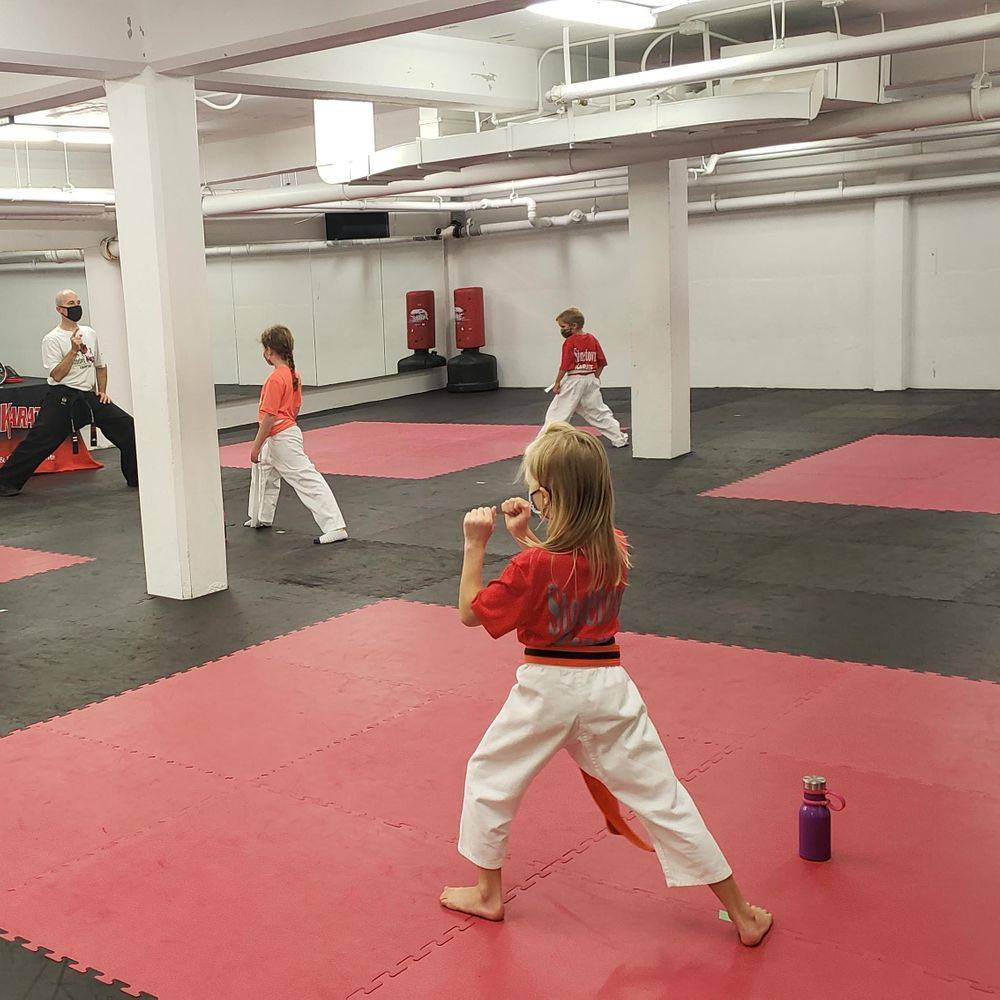 Karate and Cardio Kickboxing Classes
