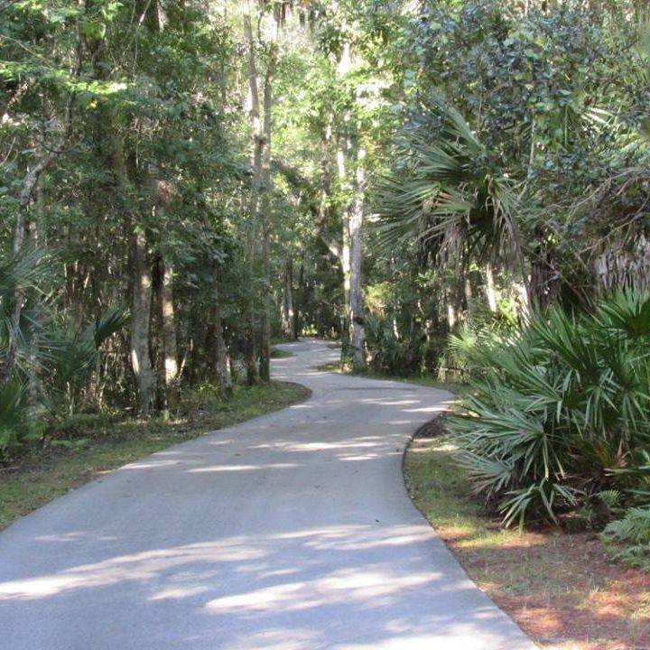 Nature trail Dunnellon, Florida