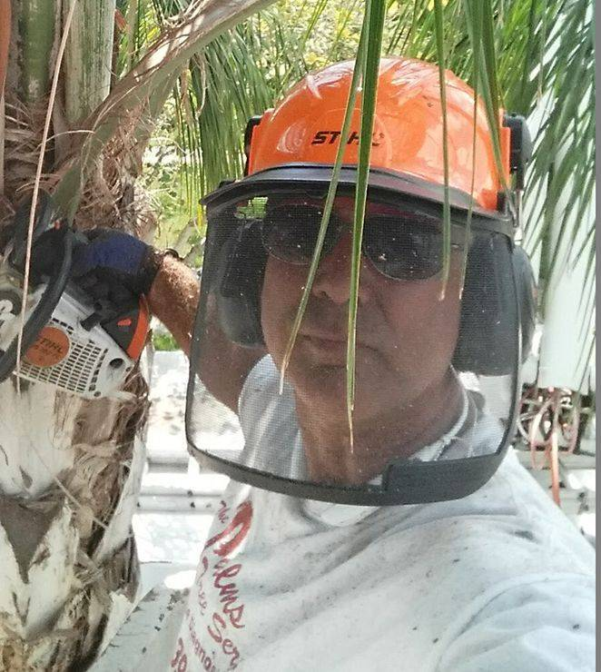 The Tree MD Graham Orr, certified arborist.
