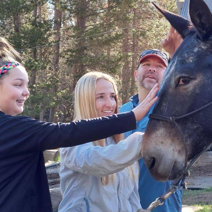 Have NEW Experiences with mules at Minarets Pack Station. Half Day rides and Full Day rides available with a Reservation.
