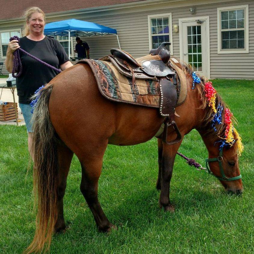 Woman standing next to a brown pony