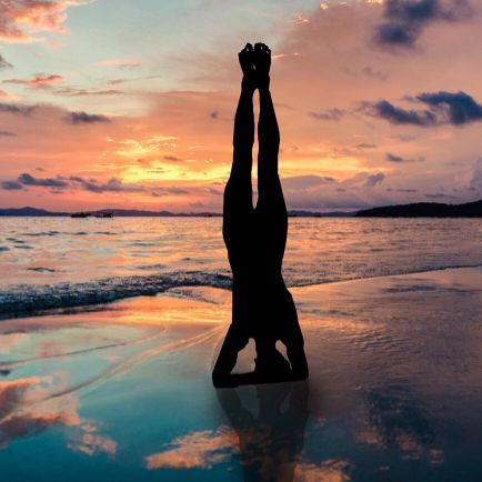 Zen Online Yoga Lose Your Mind Fitness and Yoga