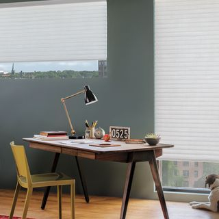 Hunter Douglas Sonnette Cellular Roller Shades
