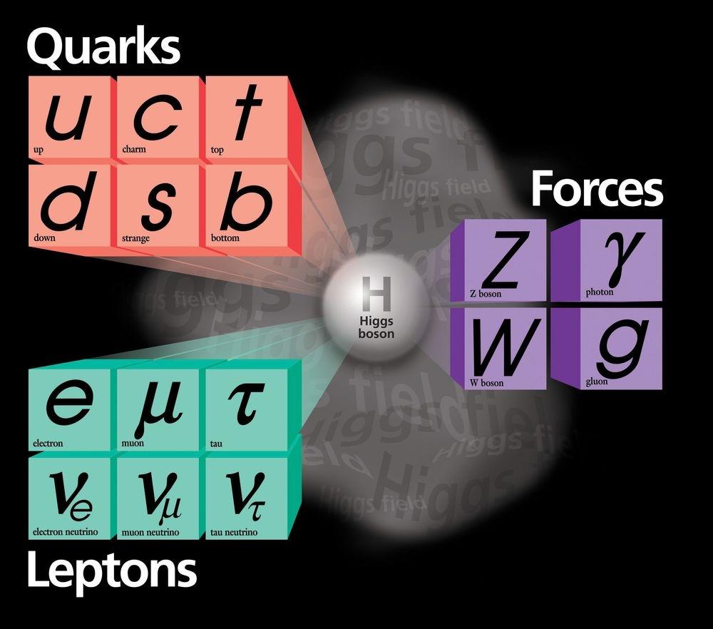 standard model, quarks, leptons, fundemental forces, fermi lab