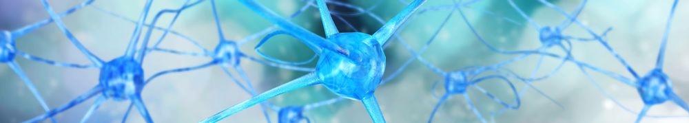 Regulation für Dein Nervensystem