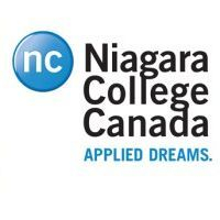 college niagara falls