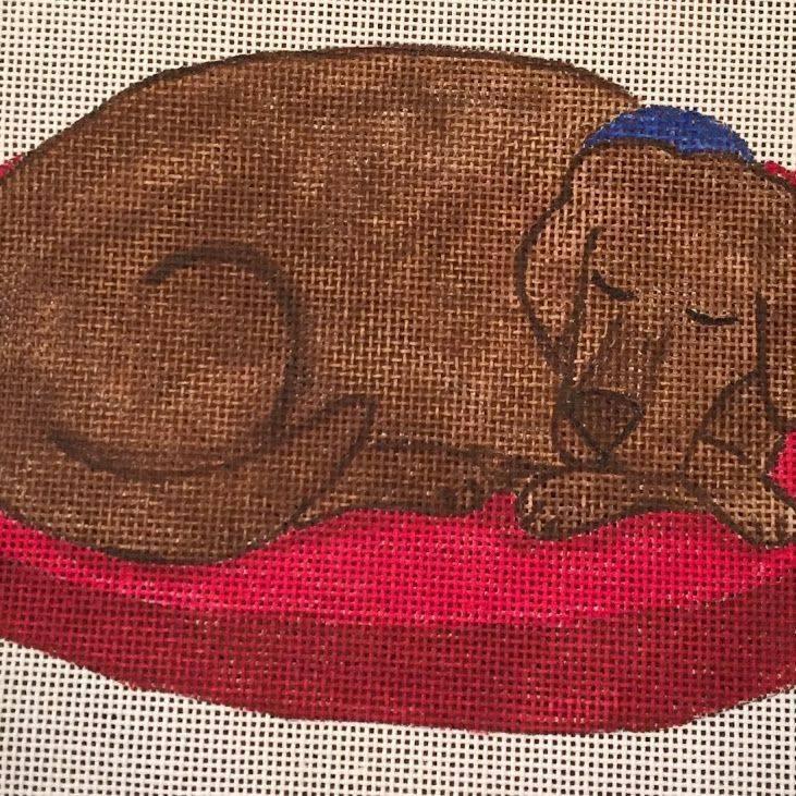 sleeping dog, chocolate lab, brown dog