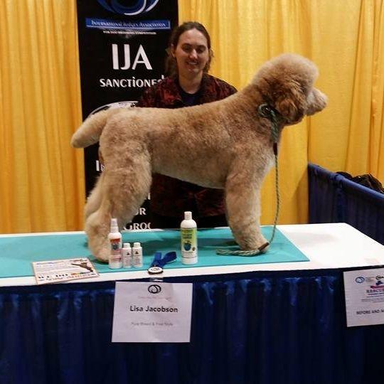 dog grooming appletonKimberly Wi Details pet groomer appleton