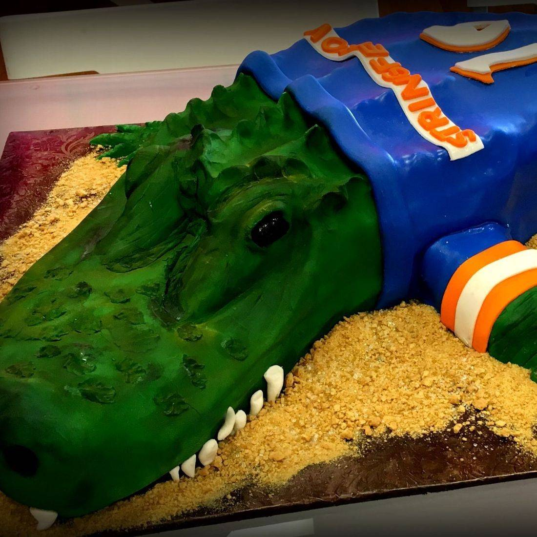 florida gators 3d cake birthday cake