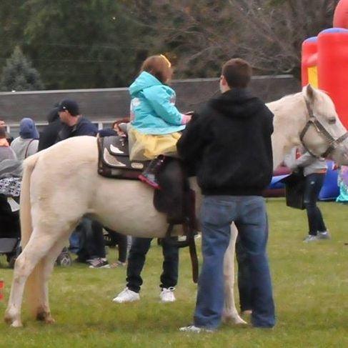 4 pony ring