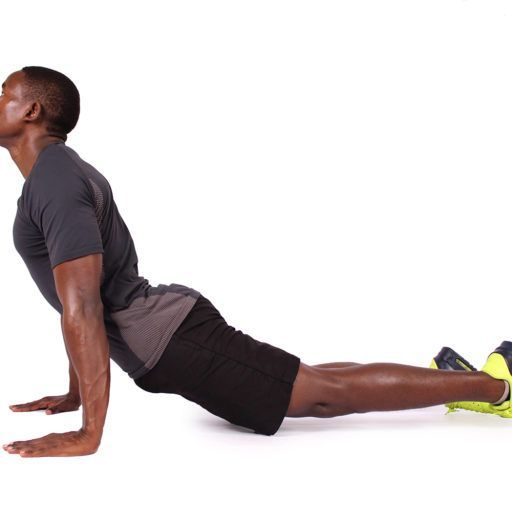 Upward Facing Plank Pose